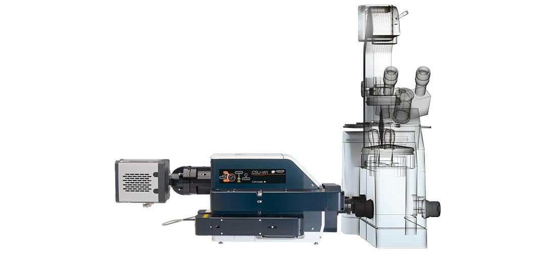 Confocal Microscopy Systems